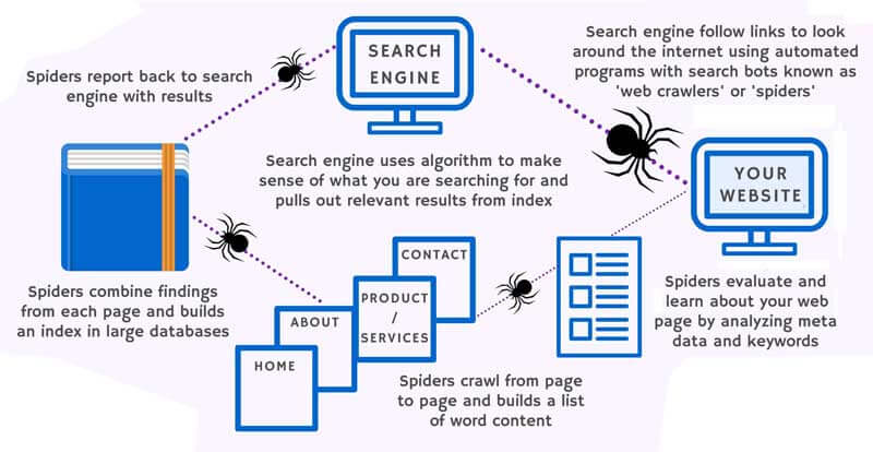 How Does Search Engine Work?